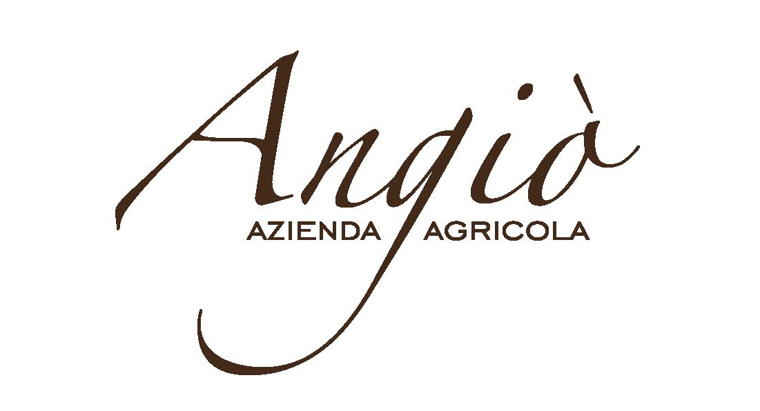 logo-angio_azienda
